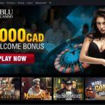 Casinoblu No Deposit Code