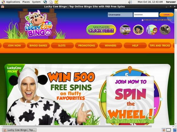 Lucky Cow Bingo Sign Up Page