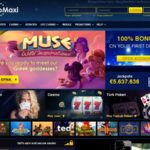 Welcome Bonus Casino Maxi
