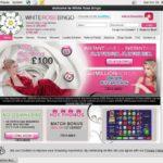 White Rose Bingo New Customer Bonus