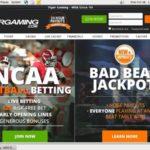 Tiger Gaming Coupons