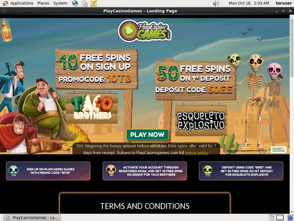 Playcasinogames Paypal Bingo Sites