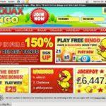 Loquax Bingo Casino App